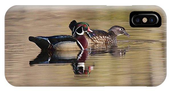 Springtime Wood Duck Pair IPhone Case