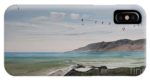 Squadron Of Pelicans Central Califonia IPhone Case
