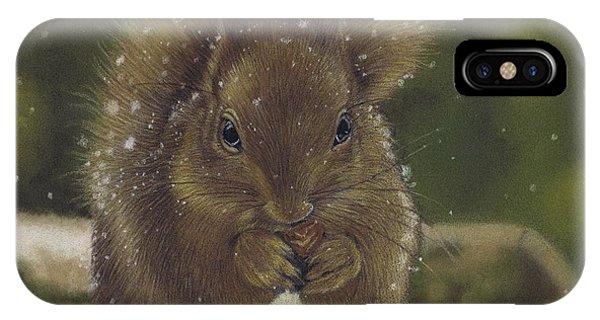Squirrel Nutkin IPhone Case