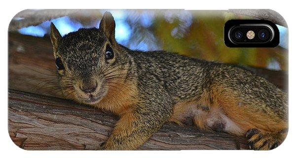 Squirrel On Watch IPhone Case