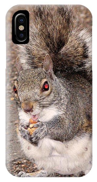 Squirrel Possessed IPhone Case
