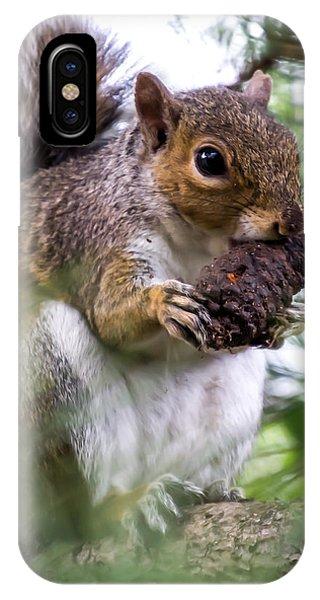 Squirrel With Pine Cone IPhone Case