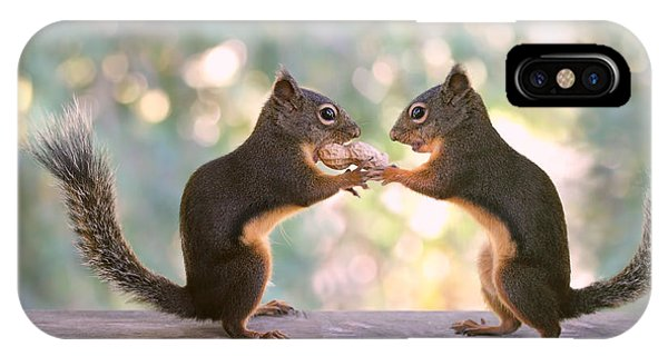 Squirrels That Share IPhone Case