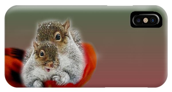 Squirrels Valentine IPhone Case
