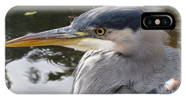 Sr Heron  IPhone Case