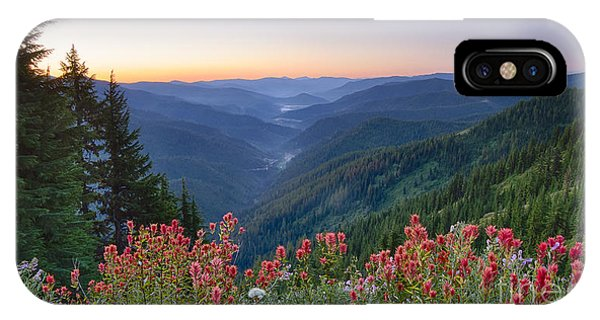 St. Joe Wildflowers IPhone Case