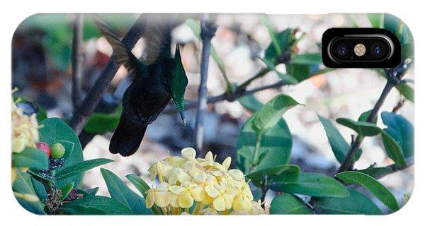 St. Lucian Hummingbird IPhone Case