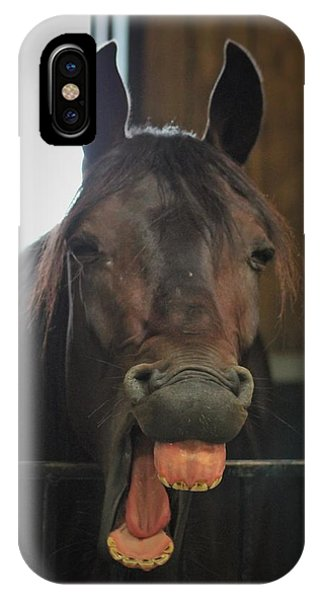 Stable Humour IPhone Case