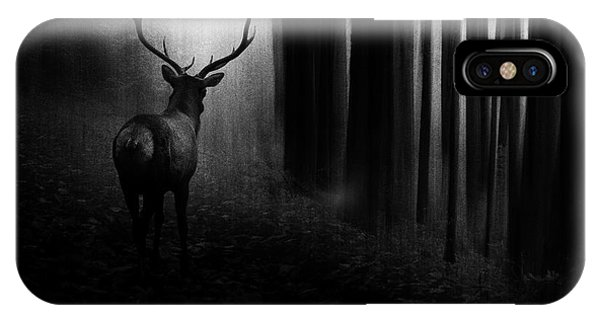 Stag iPhone Case - Stag by Doris Reindl