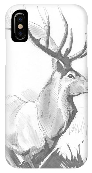 Stag Drawing IPhone Case
