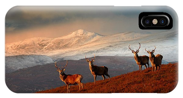 IPhone Case featuring the photograph Stags At Strathglass by Gavin Macrae