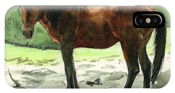 Stallion Of The Clear-cut IPhone Case