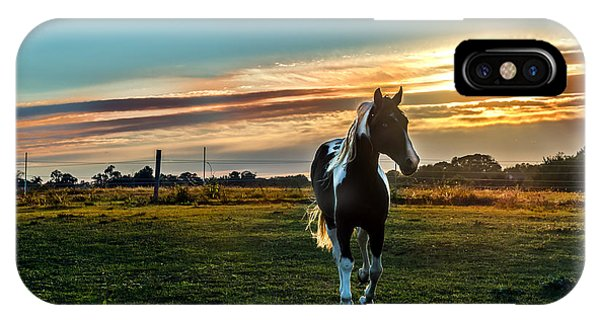 Stallion Sunset IPhone Case