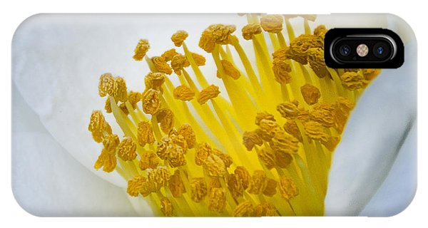 Stamen Forest IPhone Case