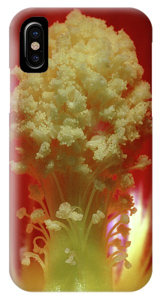 Stamen iPhone Case - Stamens Of Hollyhock by Steve Taylor/science Photo Library