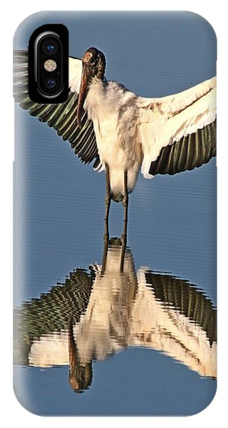 Standing At The Mirror IPhone Case