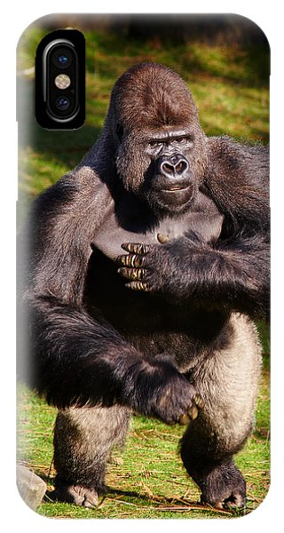 Standing Silverback Gorilla IPhone Case