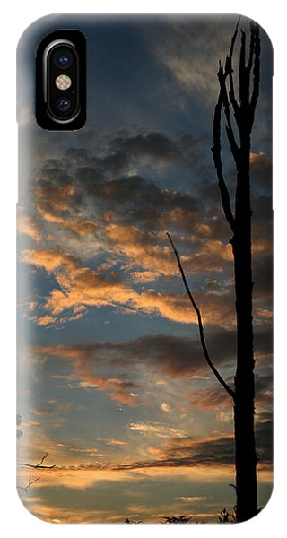 Standing Tall Among The Trees IPhone Case