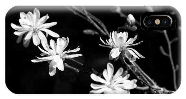 Star Magnolia In Black And White IPhone Case