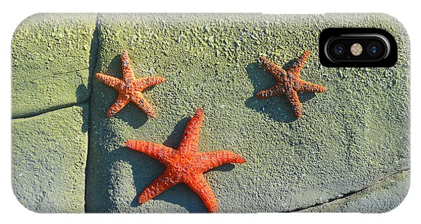 Starfish On The Rocks IPhone Case
