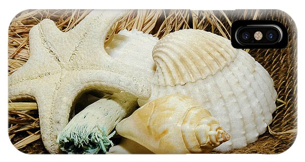 Starfish Shells And Driftwood IPhone Case