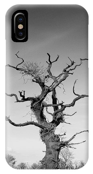 Imposing iPhone Case - Stark Tree by Pixel Chimp