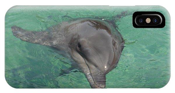 Starlett Dolphin  IPhone Case