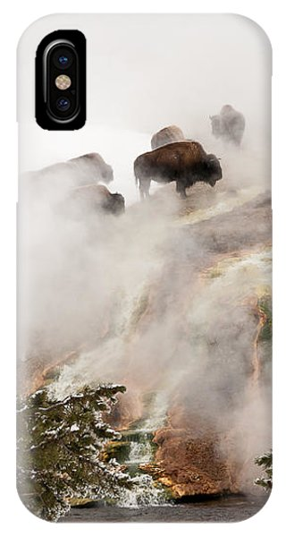 Steamy Bison IPhone Case