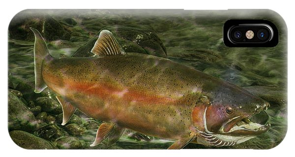 Steelhead Trout Spawning IPhone Case