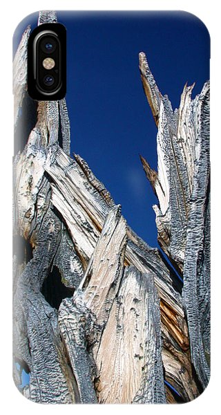 Steeple Roots IPhone Case