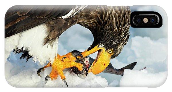 Behaviour iPhone Case - Steller's Sea Eagle by Dr P. Marazzi