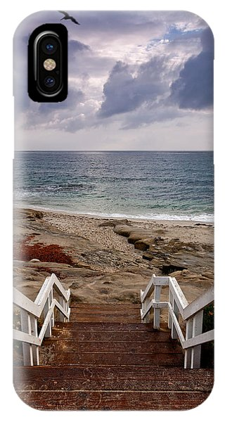 Steps And Pelicans IPhone Case