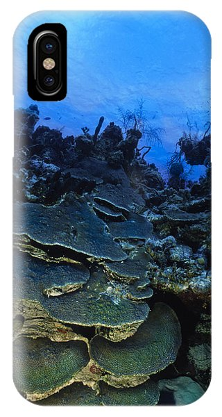 Steps Of The Sea IPhone Case