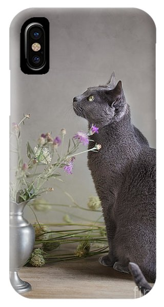 Russia iPhone Case - Still Life With Cat by Nailia Schwarz