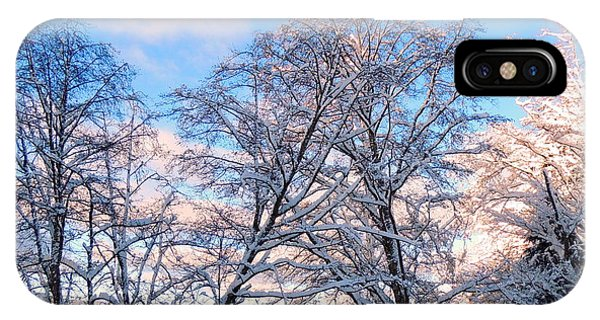 Still Of Winter IPhone Case