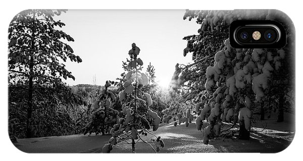 Still Standing In The Winter Sunset Bw IPhone Case