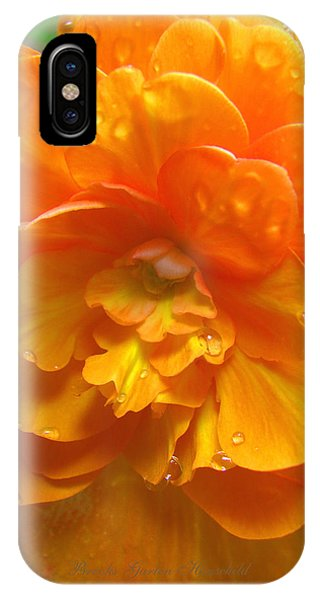 Still The One - Images From The Garden IPhone Case