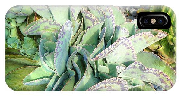 Stippled Cactus Phone Case by Deborah Smolinske