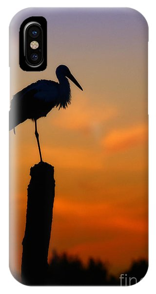 Storck In Silhouette High On A Pole IPhone Case