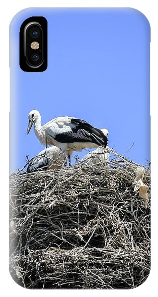 Storks Nesting IPhone Case