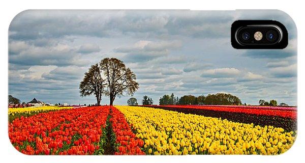 Storm Over Wooden Shoe Tulip Farm IPhone Case