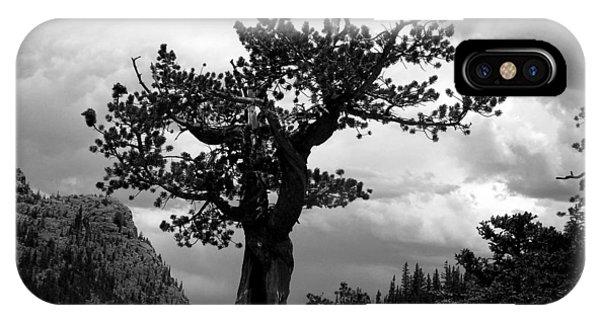Storm Tree IPhone Case