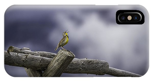 Meadowlark iPhone Case - Stormy Weather And A Sweet Song by Thomas Young
