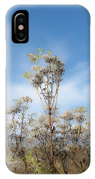 Strands Of Silver IPhone Case
