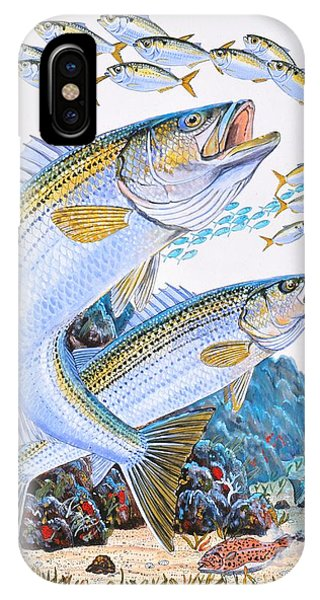 Reel iPhone Case - Striped Bass Rocks by Carey Chen