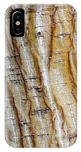 Striped Maple IPhone Case