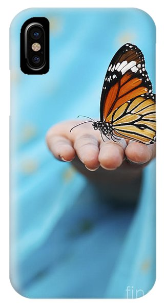 Insect iPhone Case - Striped Tiger Butterfly by Tim Gainey