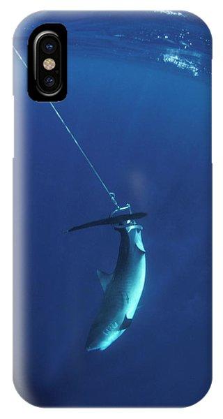 Far North Queensland iPhone Case - Struggling Tiger Shark Caught by Jurgen Freund