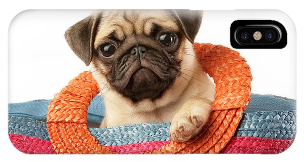Pug iPhone X Case - Stuck Pug by MGL Meiklejohn Graphics Licensing
