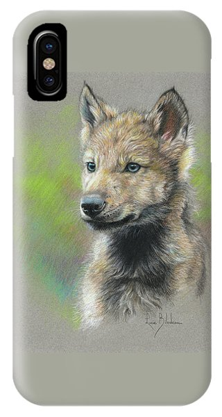 Wolf iPhone Case - Study - Baby Wolf by Lucie Bilodeau